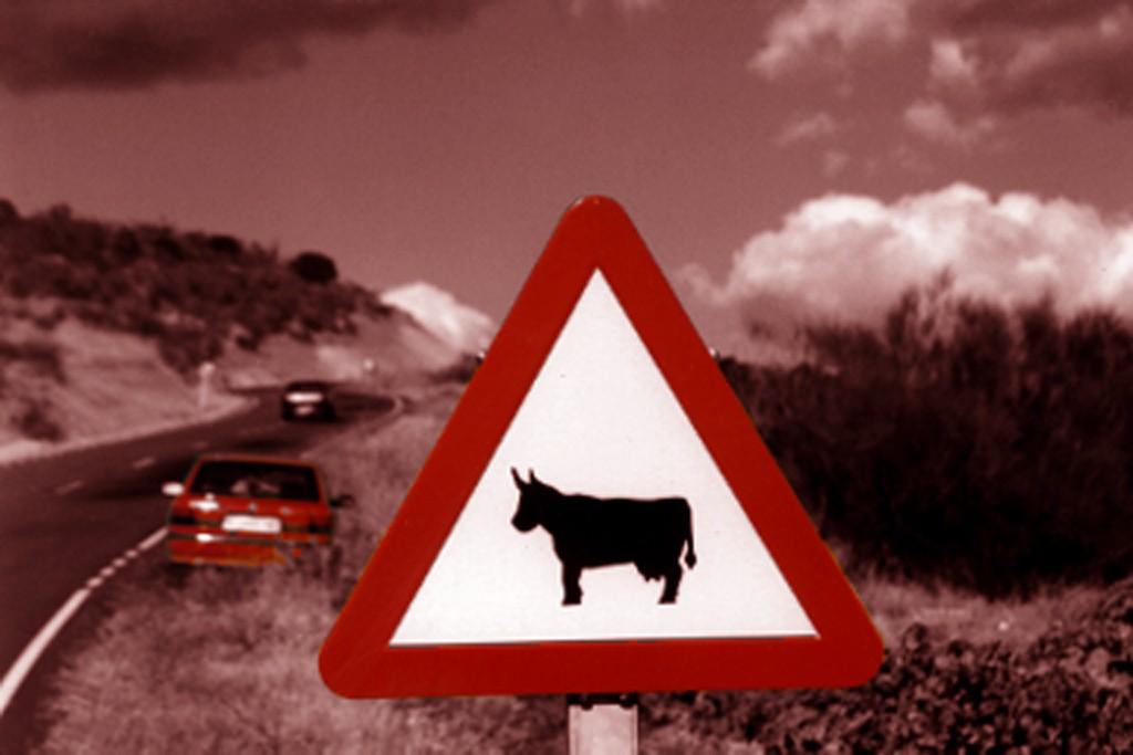 Header cow