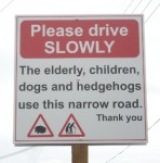 hedgehog-elderly-uk-1