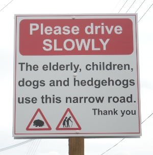 Elderly and hedgehogs