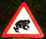 toad-uk-2