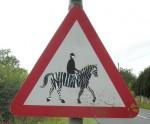 zebra-uk-1