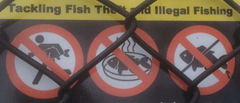No fishing on the Severn